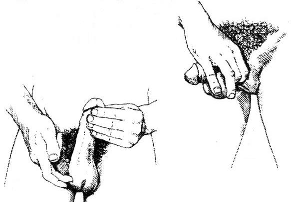 Как правильно делать массаж яичек мужчины || Как делать массаж яичек для повышения потенции